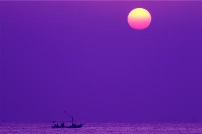 purple sky - Copy