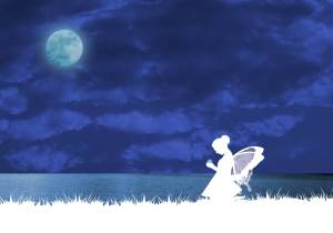 Fairy under moonlight