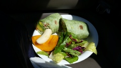 Avocado wrap with papaya