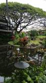 Honolulu Airport Garden