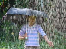 singing-in-the-rain-1-1437523