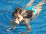 swimming-1437601